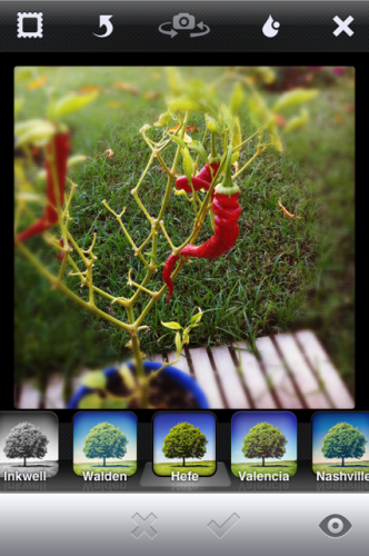 photo 41 332x500 Instagram 2.0 adds high res saving, revamped camera, real time filters and optional borders