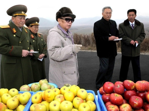 tumblr lsg9teqLuw1qewv1lo1 500 Tumblr Tuesday: The man behind Kim Jong il Looking at Things