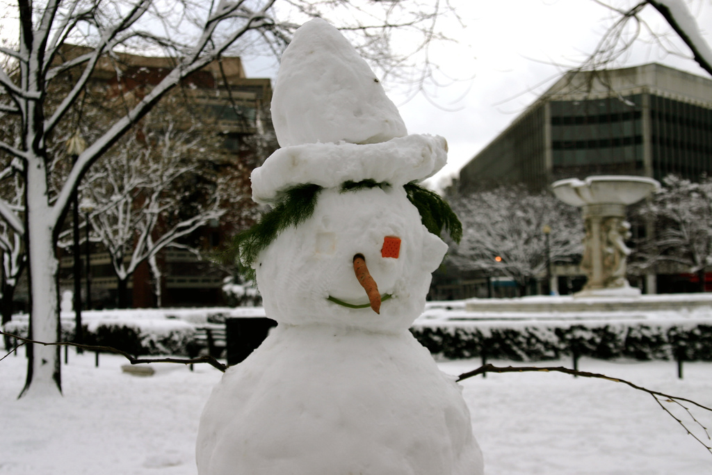 Snow E. Mann may have visited your LinkedIn profile today