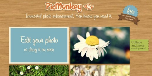 PicMonkey 520x261 Google suggests PicMonkey as a Picnik replacement, and it was created by the same people