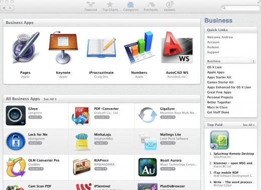 Mac App Store Business 520x380 Bodega is a beautiful alternative to Apples Mac App Store