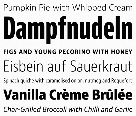 jaf bernini sans 25 Brand new typefaces released last month that you need to know about (August)