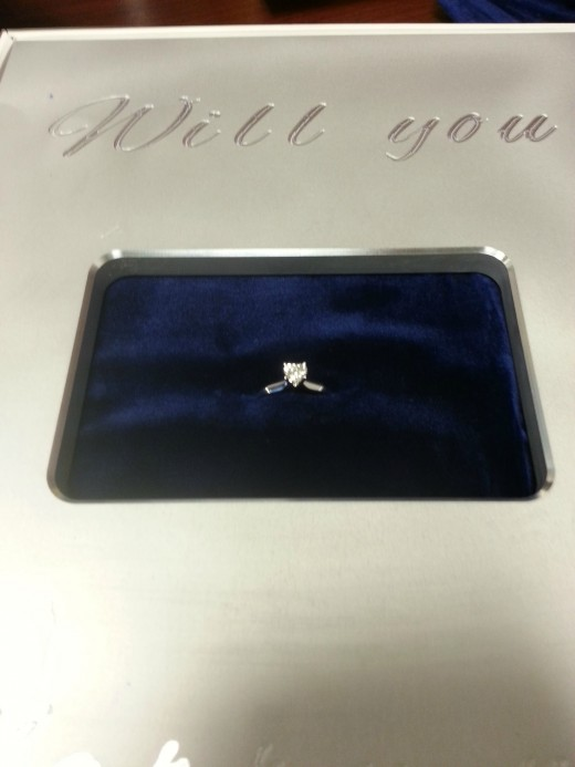 tZ8t5 520x693 iDo: Would you accept a proposal delivered in an iPad box?