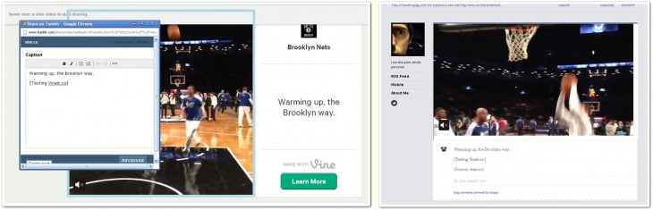 vineit on tumblr 730x235 Now you can share any Vine video to Tumblr and others blog with Vineit