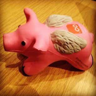 dot co flying pig