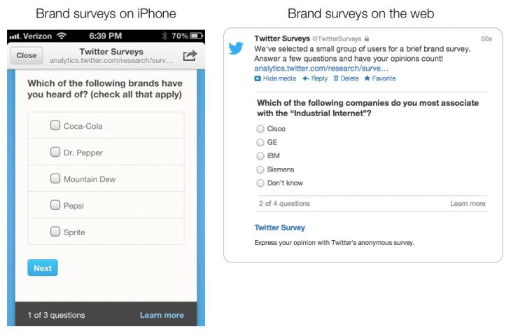Brand Survey Screenshots