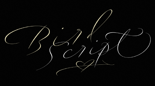 bird script 30 of the most beautiful typeface designs released last month (April)