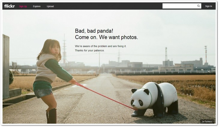 flickr panda 730x424 Flickrs Fail Panda spotted as site suffers first outage 4 days after its revamp (Update: Now back online)