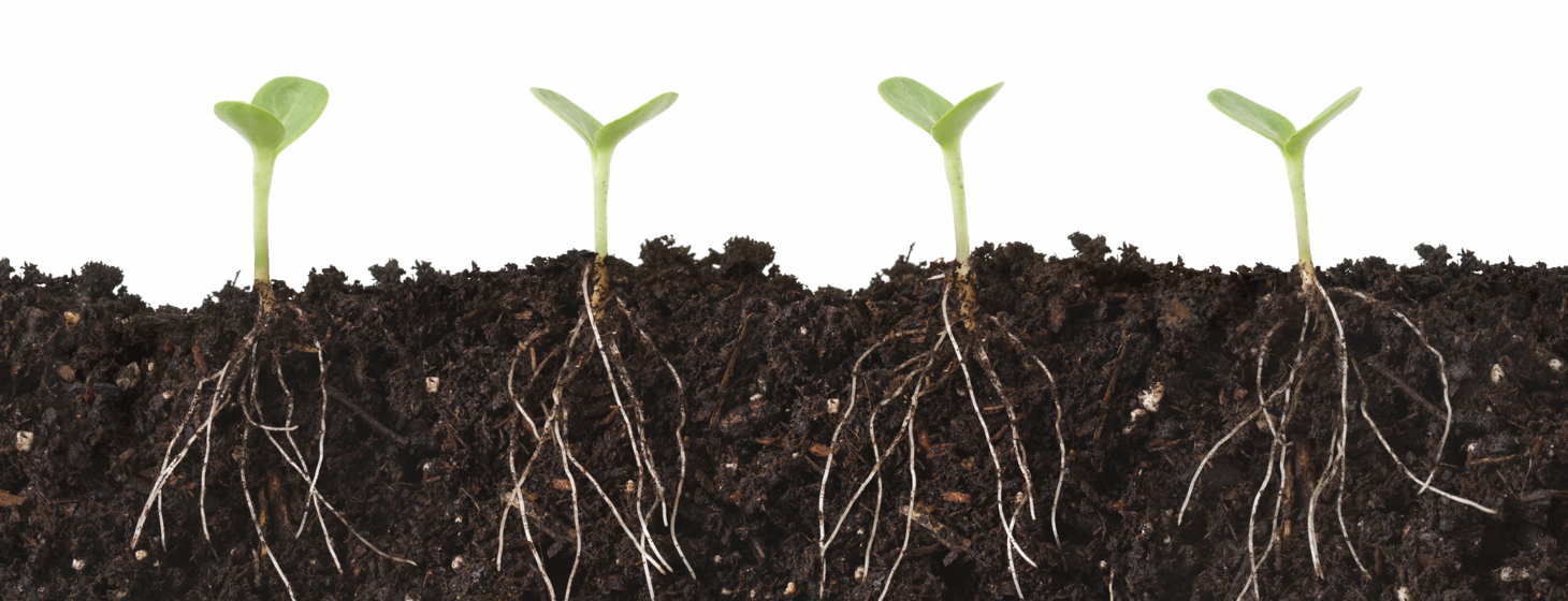 The Difference Between Growth Hacking and Marketing