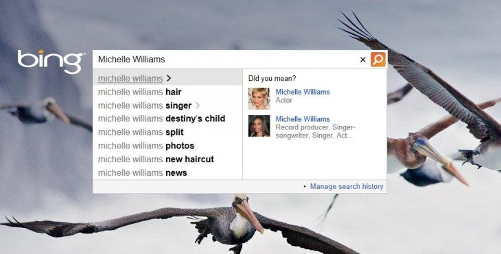 Untitled 3CB414FF 730x371 Microsoft expands Bings autosuggest for people to include animals, brands, movies, albums, places, and more