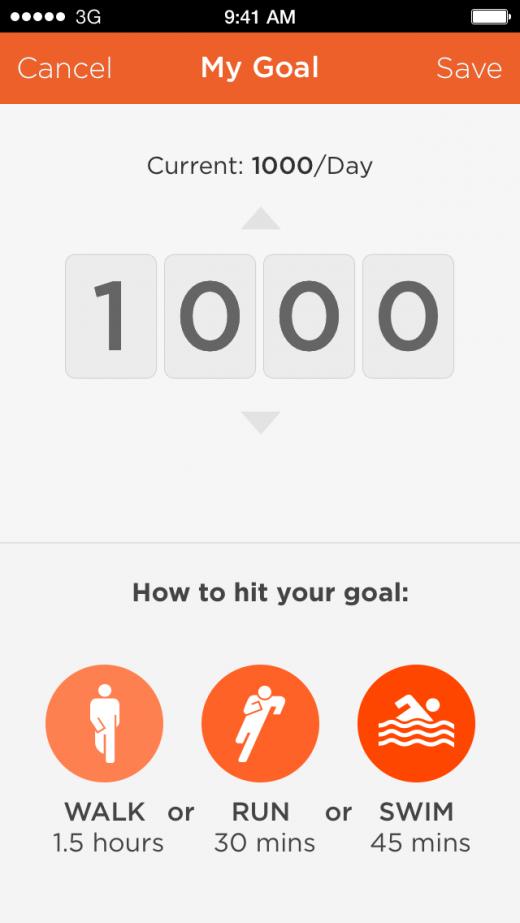 shine goal 1000