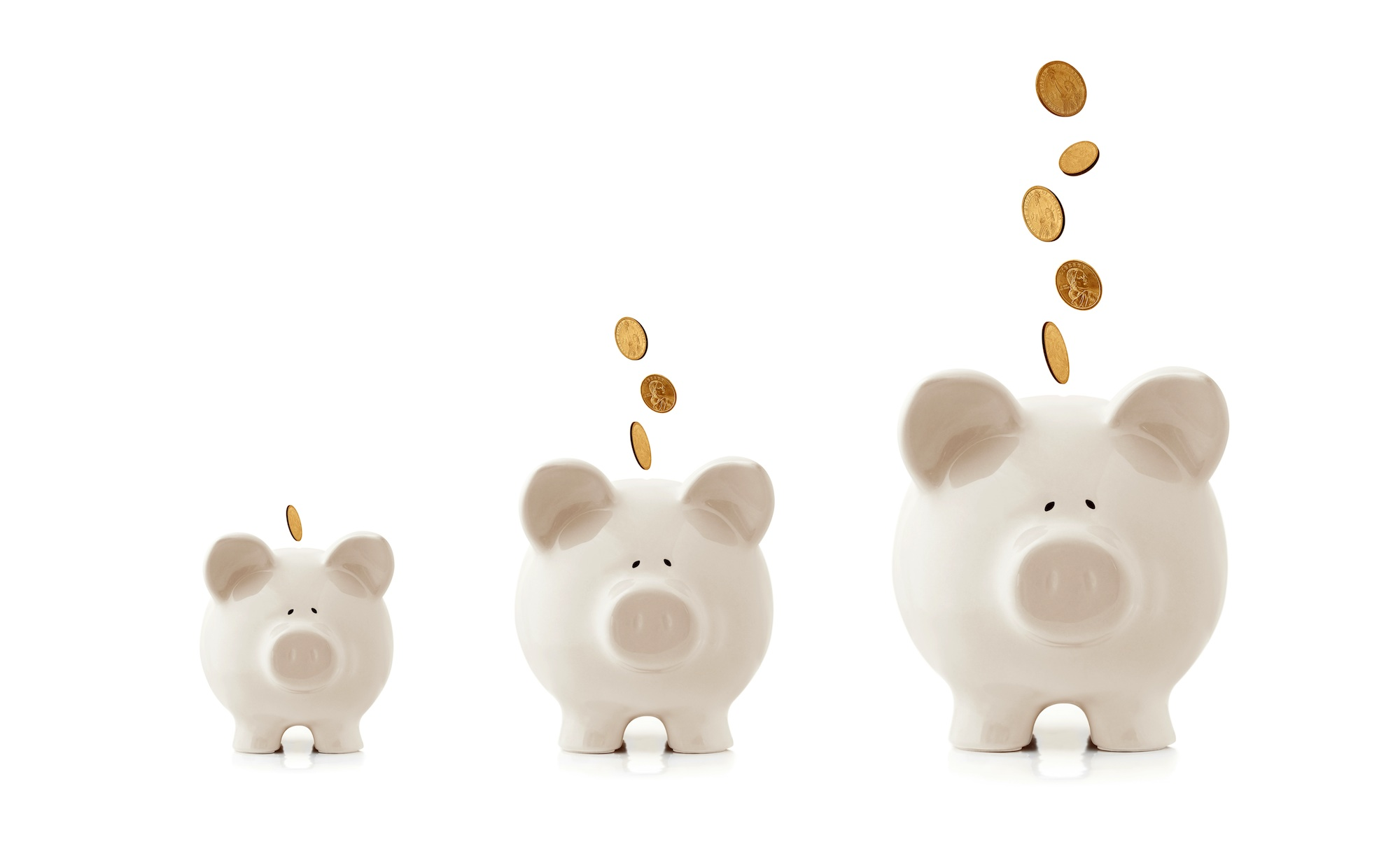 bare minimum skills required to work for yourself piggy banks