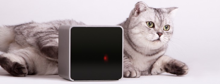Life after Kickstarter: How Petcube is preparing its pet-focused gadget for the mass market