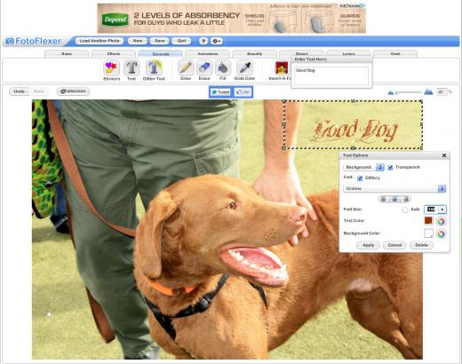 FotoFlexer online editor