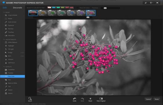 Photoshop Exresss online editor