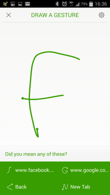 Dolphin App draw a gesture