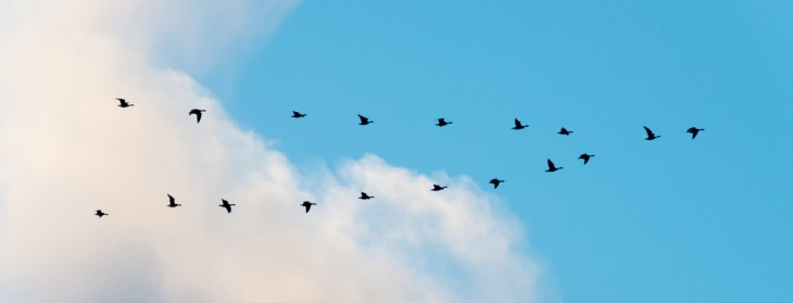 Migrating your application to the cloud