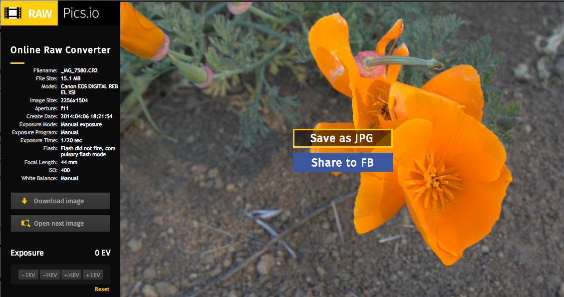 Finally: You can open and process Raw images in your browser
