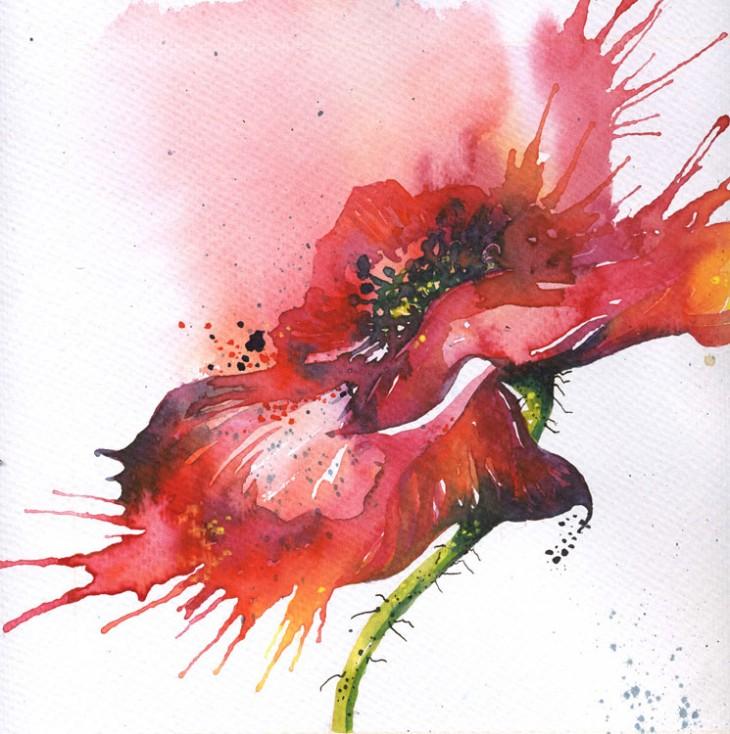 Natasha R. Graham | Hand-painted poppy illustration