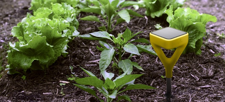 Edyn wants to make your garden smart with its connected soil sensor and watering attachment