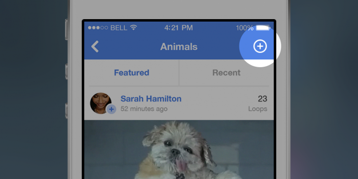 Vine for iOS now lets you follow channels and post straight from your Camera Roll
