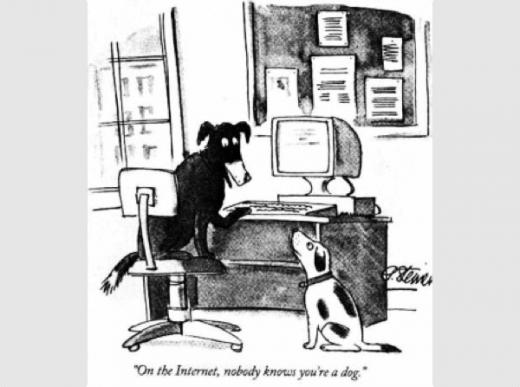 internet dog