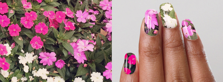 NailSnaps Lets You Feature Your Cat as Nail Polish