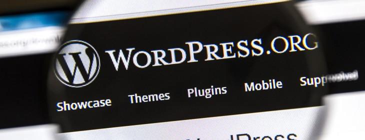 Grab this WordPress starter kit and name-your-own-price WordPress Theme Bundle