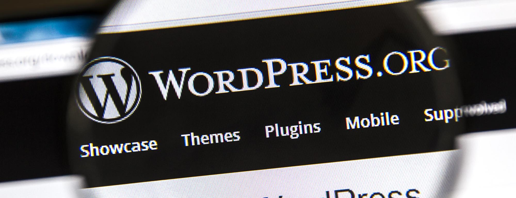 Grab this WordPress Starter Kit and Themes Bundle