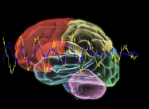 EEG.Brain_