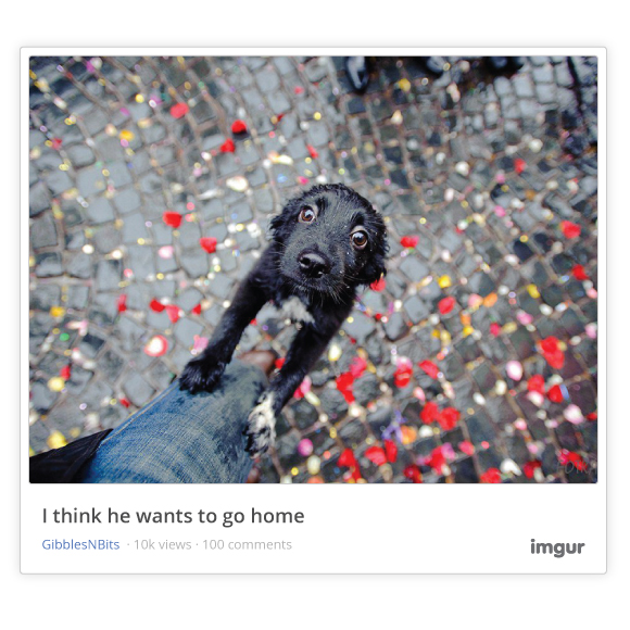Imgur now lets you embed images, GIFs and albums anywhere