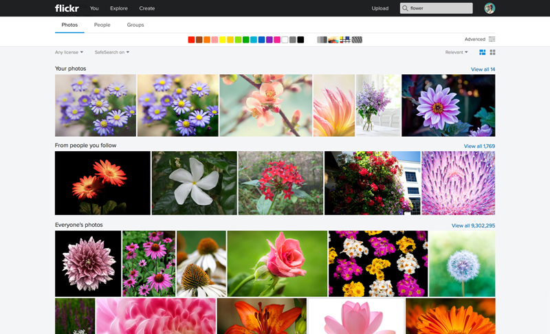 Flickr_Web-Search1