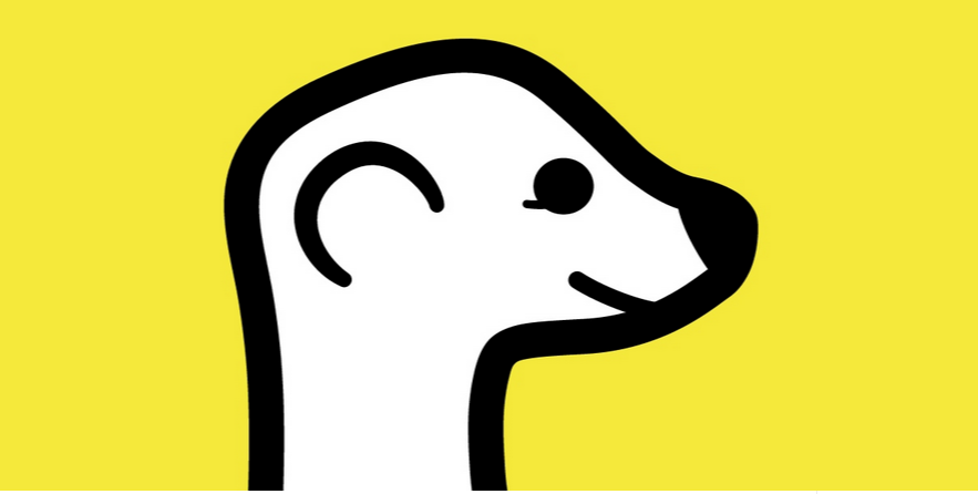 Meerkat launches developer platform and API