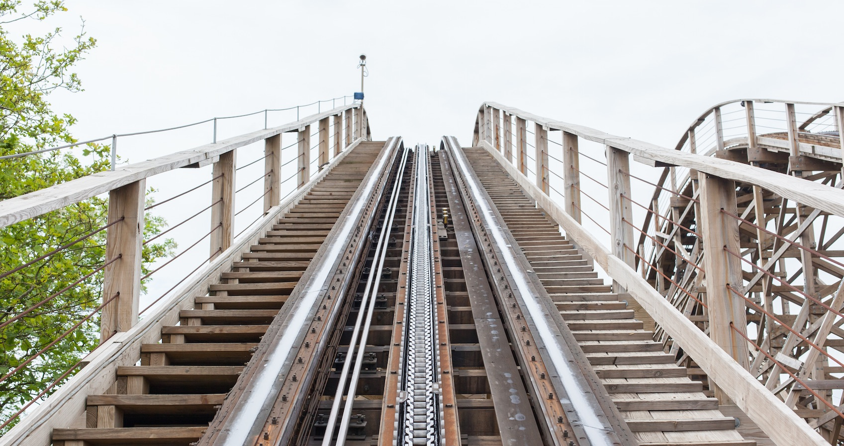 How to survive the entrepreneurial rollercoaster