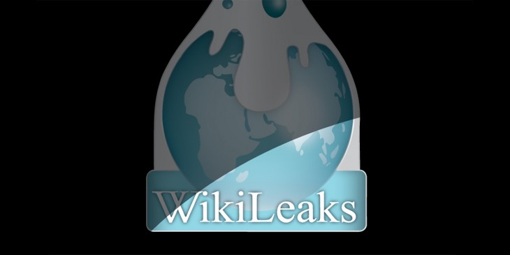 WikiLeaks has started accepting secret documents again after nearly five years