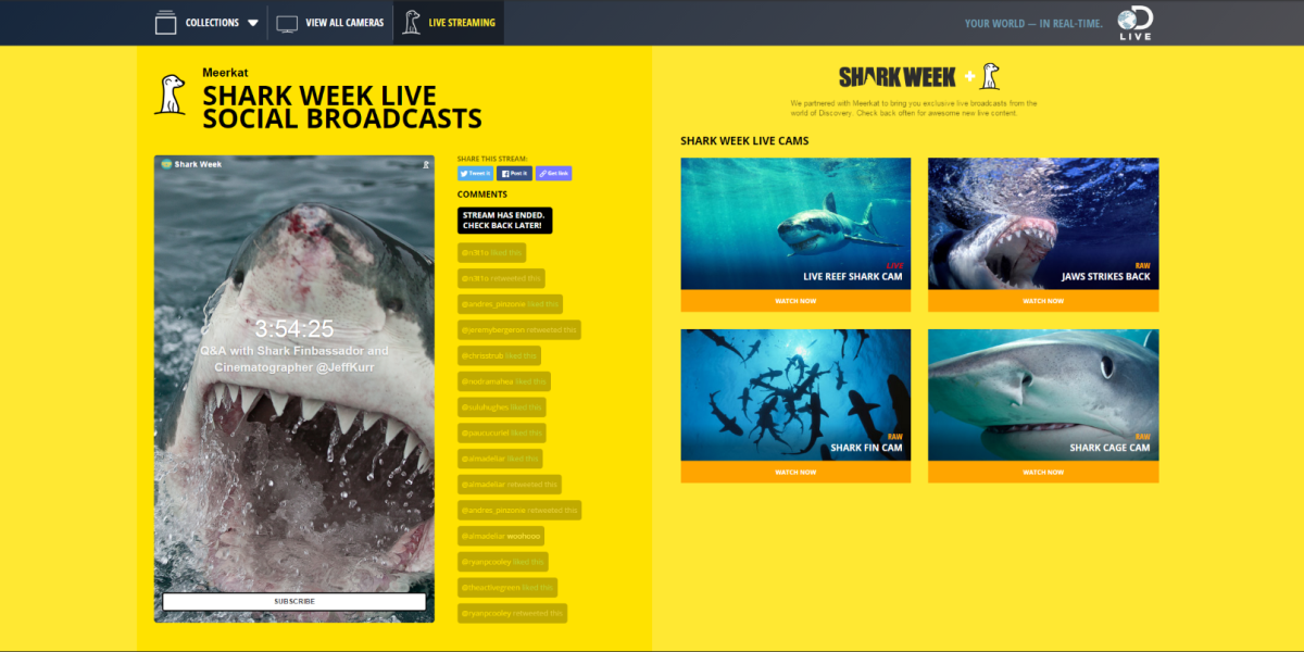 Discovery links up with Meerkat for live video streams during Shark Week