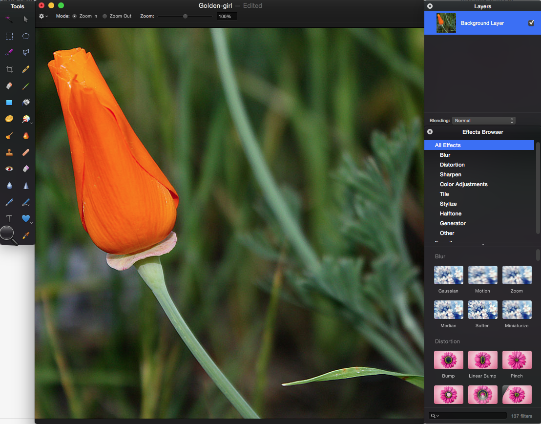 10 Photoshop alternatives that offer powerful editing and
