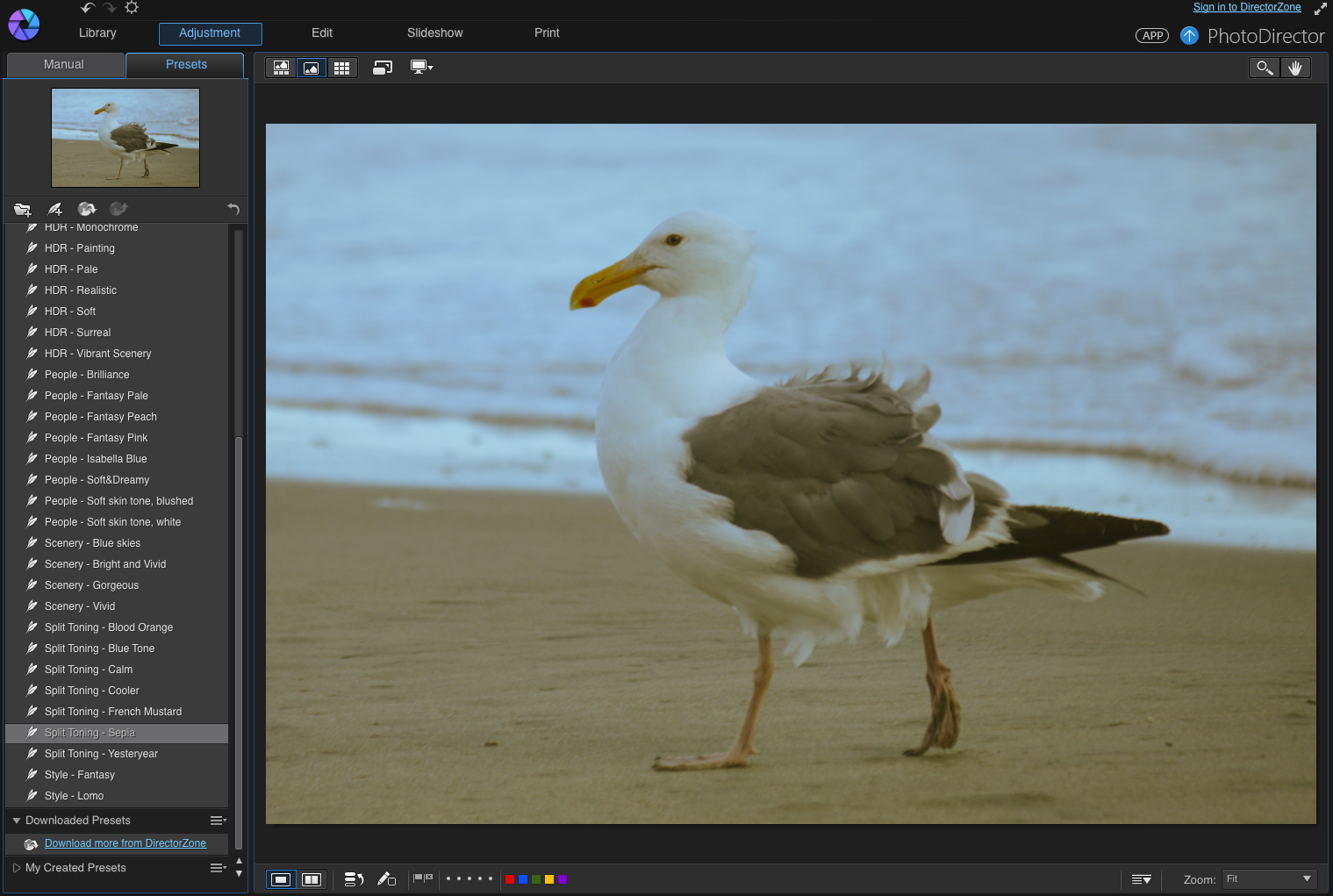 photoshop apk download for pc