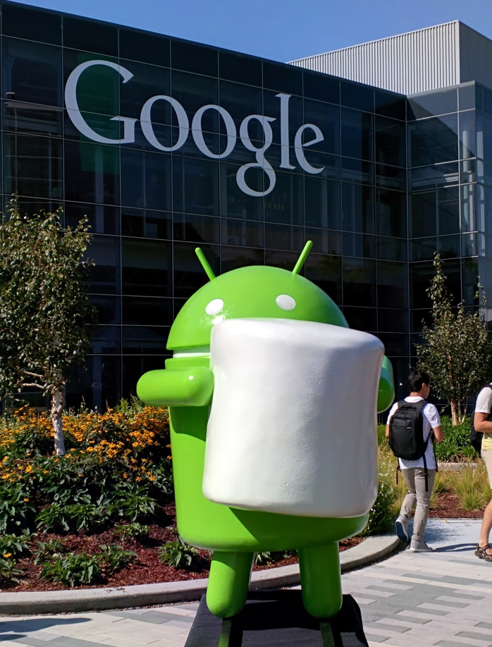 It's official: Android M is 'Marshmallow'