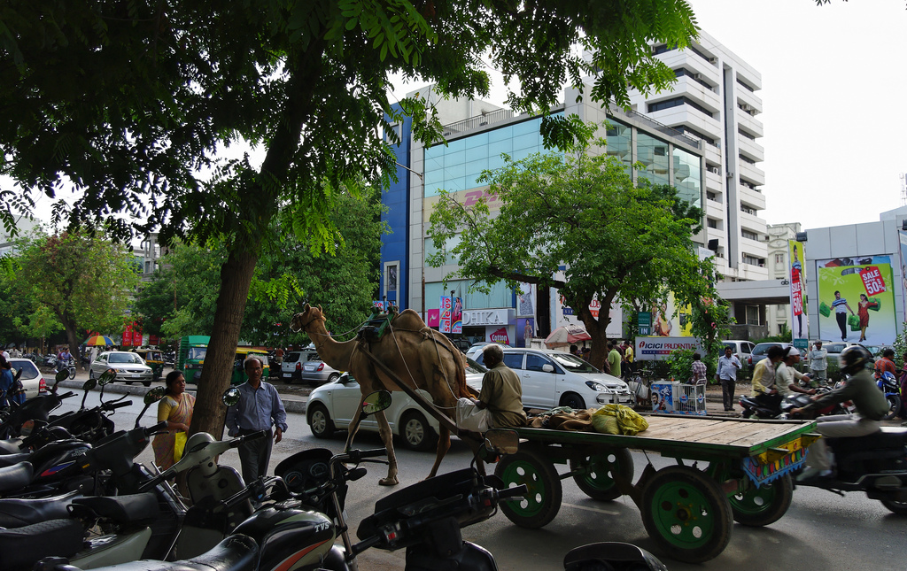 A slice of Ahmedabad. Gujarat is home to India's current Prime Minister Narendra Modi