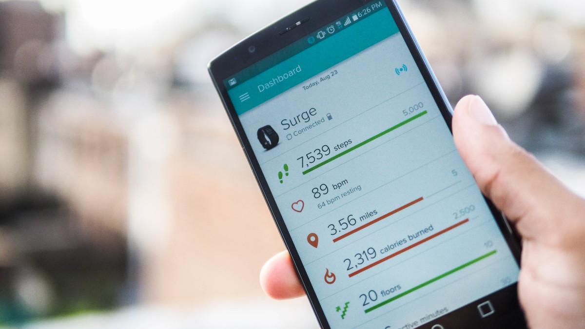 Fitbit metrics