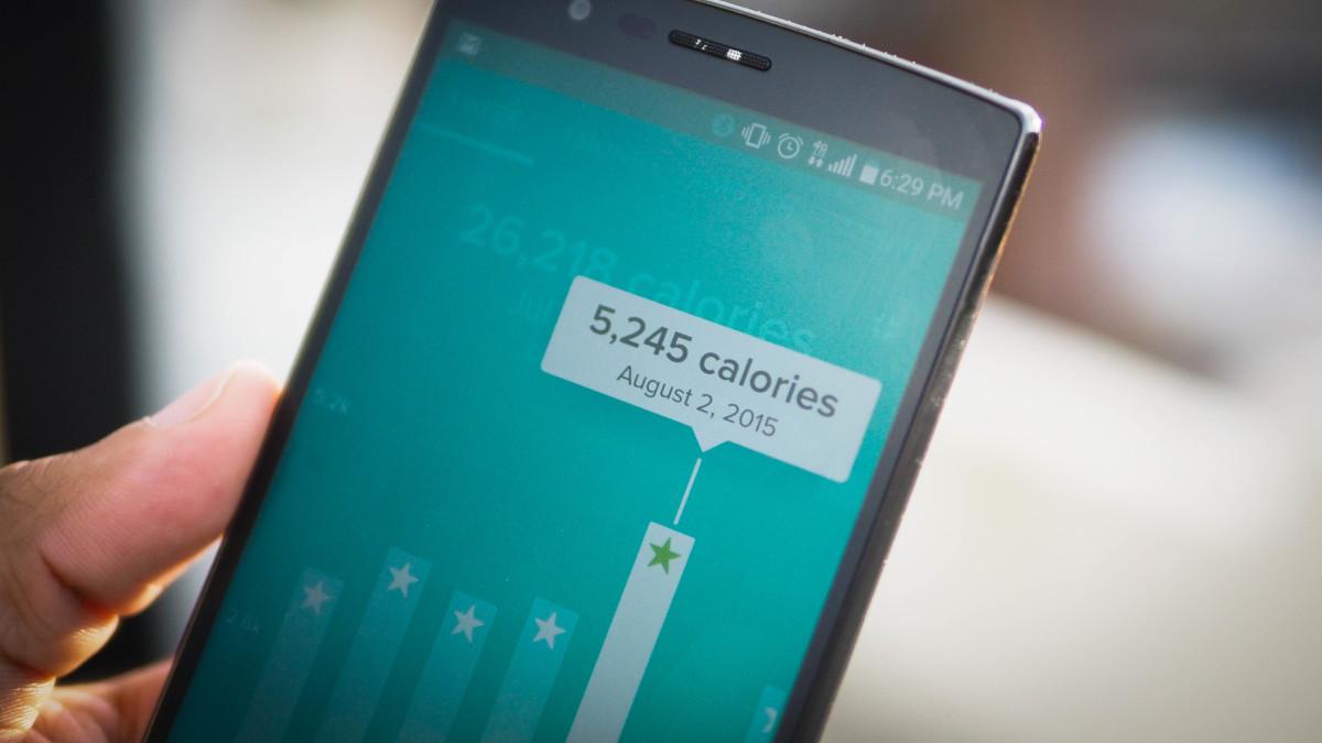 Fitbit calories tracker