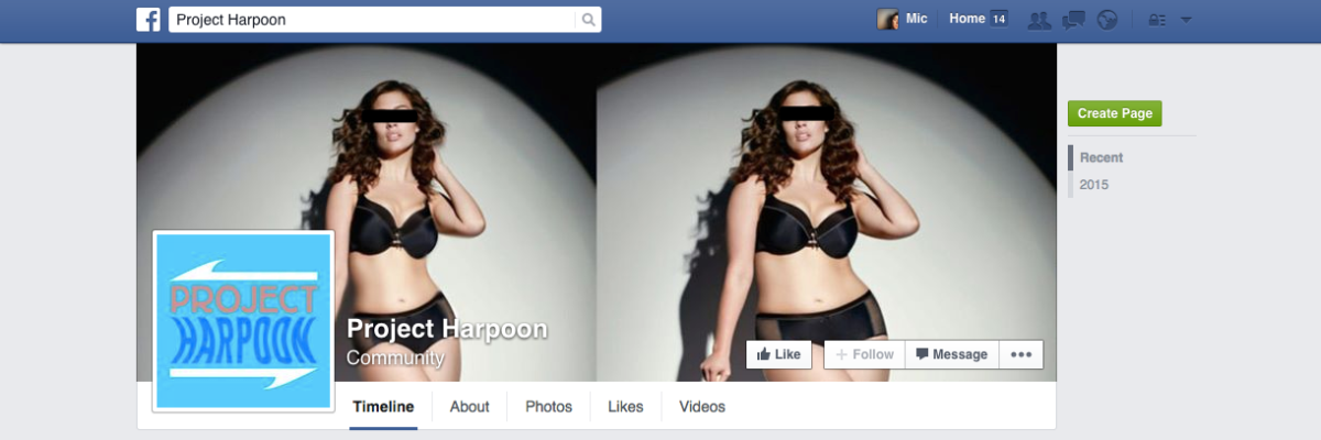 Meet Project Harpoon, the Photoshop bullies attacking larger women on Facebook