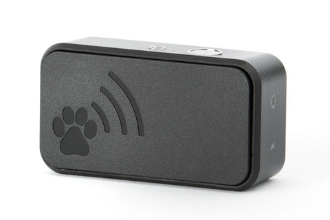 9 Tracker Monitors That Keep Your Furry Friends Safe And
