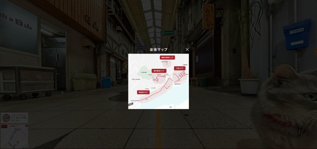 Cat Street View_start