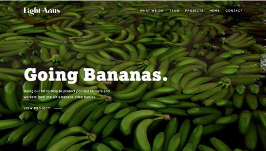 storytelling website design