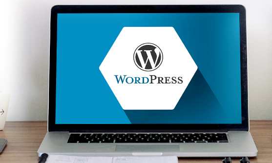WordPress Wizard bundle, plus 85% off lifetime access to Themes Kingdom and Noun Project icons