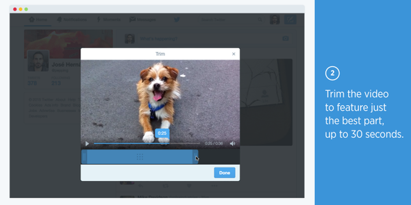 Twitter is really serious about video now