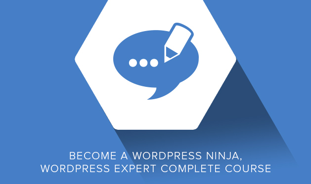 WordPress enhancement: Make your website shine with this themes and plugins bundle