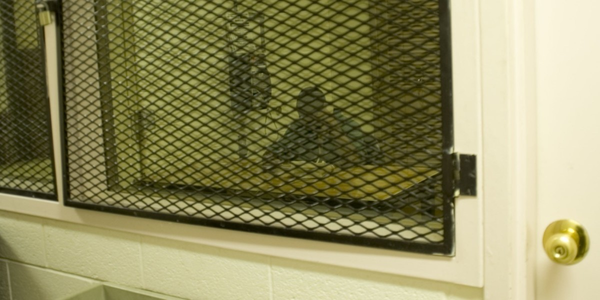 Massive US prison phone service breach shows inmates' calls to their lawyers aren't private ...